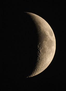 Moon2016-11-5.JPG