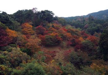 aburayama-2.jpg