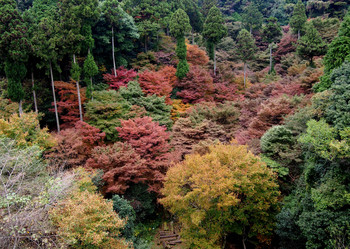 aburayama-3.jpg