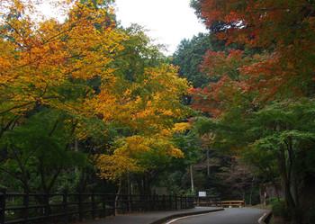aburayama-4.jpg